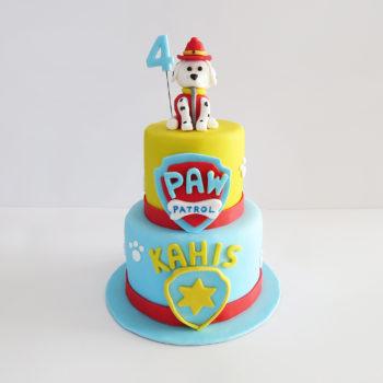 Gâteau patpatrouille